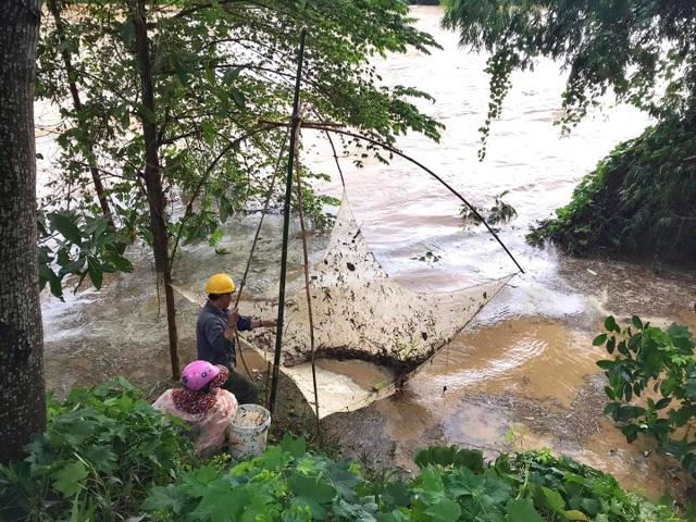 Người dân đổ ra đường giăng lưới bắt cá giữa lũ lớn - 9