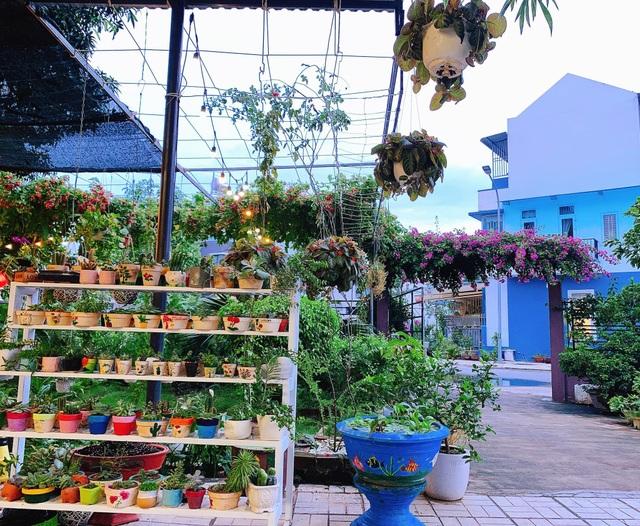 Khu vườn 63m2 với hơn 30 loài hoa đua nhau khoe sắc của mẹ đảm ở Quảng Ngãi - 2