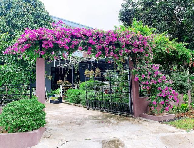 Khu vườn 63m2 với hơn 30 loài hoa đua nhau khoe sắc của mẹ đảm ở Quảng Ngãi - 5