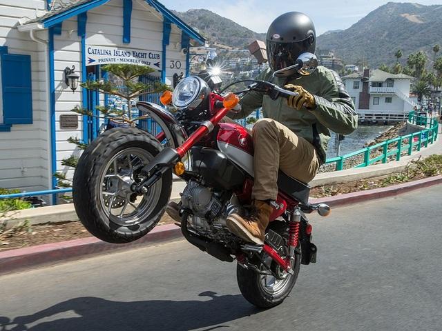 Top motor có phong cách hoài cổ chất nhất 2020: Nhiều mẫu bán ở Việt Nam - 2