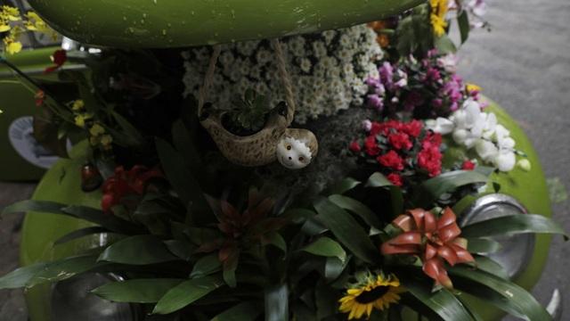 Biến xe Beetle cổ thành quầy bán hoa tươi trên phố thu hút mọi ánh nhìn - 5