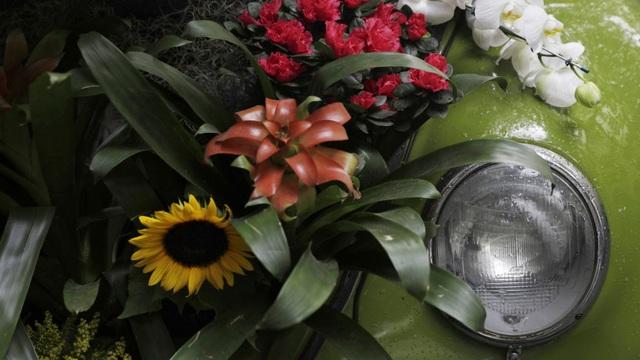 Biến xe Beetle cổ thành quầy bán hoa tươi trên phố thu hút mọi ánh nhìn - 4