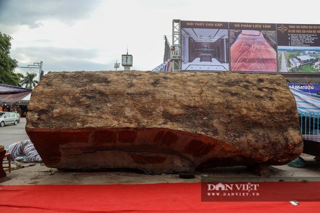 Ngỡ ngàng khúc gỗ được rao bán 10 tỷ đồng tại hội chợ ở Hà Nội - 4