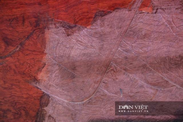 Ngỡ ngàng khúc gỗ được rao bán 10 tỷ đồng tại hội chợ ở Hà Nội - 6