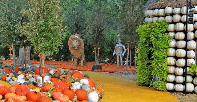 Ngôi làng được làm từ 90.000 quả bí ngô, vào bên trong như vườn cổ tích - 1