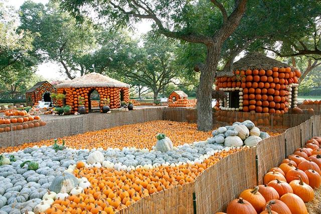 Ngôi làng được làm từ 90.000 quả bí ngô, vào bên trong như vườn cổ tích - 2