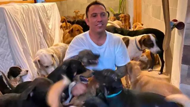 Người hùng cưu mang hàng trăm chú chó hoang trong cơn bão - 1
