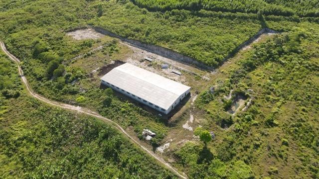 Sẽ kiểm tra thực tế trang trại bò rộng gần 250 ha chỉ nuôi… mấy con bò - 5