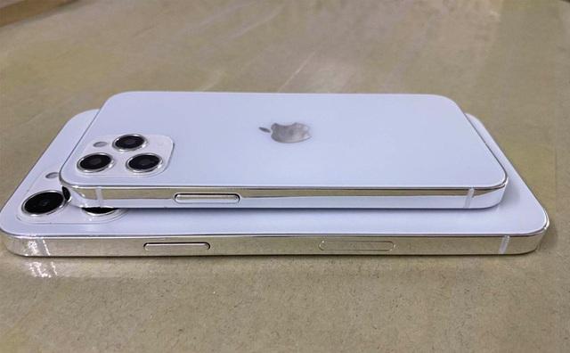 Phác họa chân dung iPhone 12 trước giờ ra mắt - 2