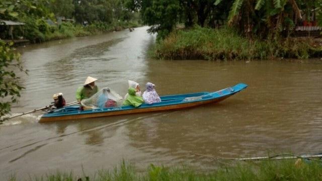 Cà Mau: Một huyện cho học sinh nghỉ học 2 ngày do ảnh hưởng bão - 1
