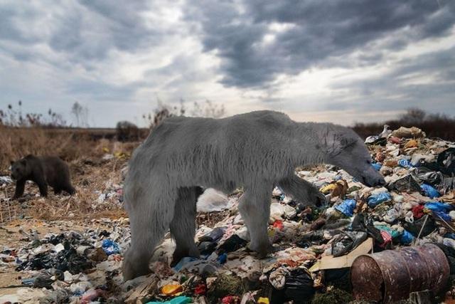 Động vật 100 năm sau biến đổi kỳ quái như thế nào? - 1