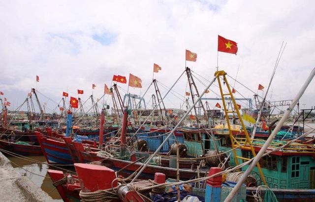 Ngư dân hối hả kéo thuyền bè lên bờ tránh bão - 8