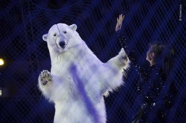 Ngắm những bức ảnh đoạt giải Ảnh động vật hoang dã đẹp nhất năm 2020 - 3
