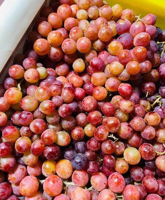 Sự thật về loại nho kẹo rừng đang gây sốt trên thị trường - 2