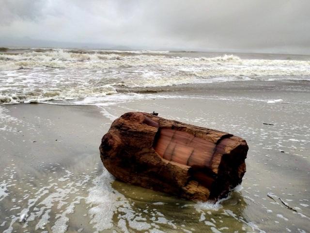 Hàng chục tấn rác thải bủa vây bãi biển ở Quảng Nam sau lũ  - 8