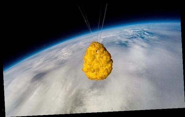 Miếng gà rán đầu tiên trên thế giới một mình bay vào vũ trụ - 2