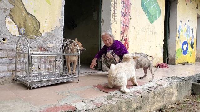Hà Nội: Mảnh đời cuối cùng còn sót lại ở trại phong Đá Bạc - 8