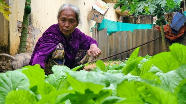 Hà Nội: Mảnh đời cuối cùng còn sót lại ở trại phong Đá Bạc - 3