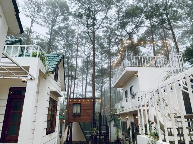 """Đóng 3 cửa hàng ở Hà Nội, cặp đôi """"bỏ phố, lên rừng"""" làm nhà đẹp như mơ - 6"""
