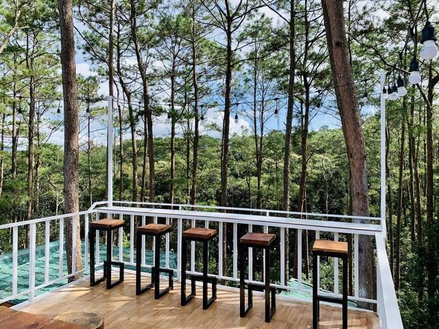 """Đóng 3 cửa hàng ở Hà Nội, cặp đôi """"bỏ phố, lên rừng"""" làm nhà đẹp như mơ - 14"""