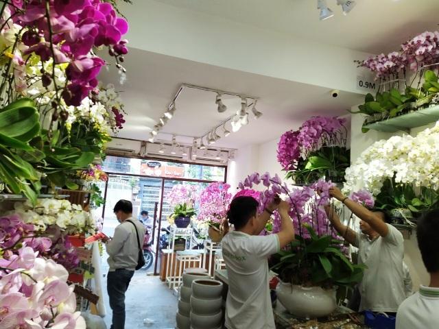 Một doanh nghiệp chi 200 triệu đồng mua hoa tươi tặng chị em dịp 20/10 - 11