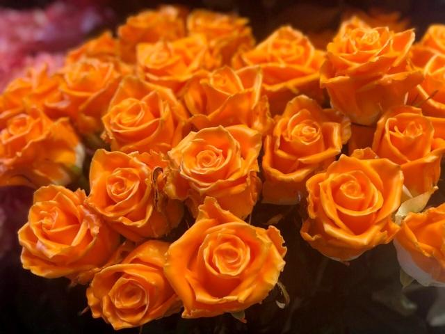 Một doanh nghiệp chi 200 triệu đồng mua hoa tươi tặng chị em dịp 20/10 - 6