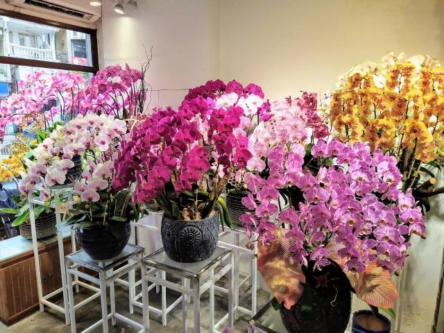 Một doanh nghiệp chi 200 triệu đồng mua hoa tươi tặng chị em dịp 20/10 - 10