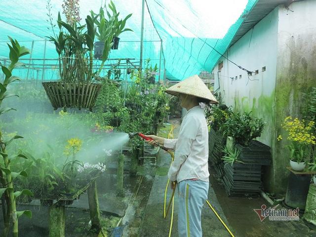 Vườn lan gần 20.000 cây: Tài sản hàng chục tỷ của tay chơi Sài Thành - 4