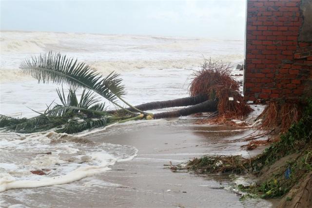 Sóng lớn uy hiếp bờ, resort trăm tỷ ở Hội An có nguy cơ bị nuốt chửng - 15