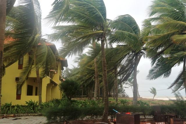 Sóng lớn uy hiếp bờ, resort trăm tỷ ở Hội An có nguy cơ bị nuốt chửng - 5