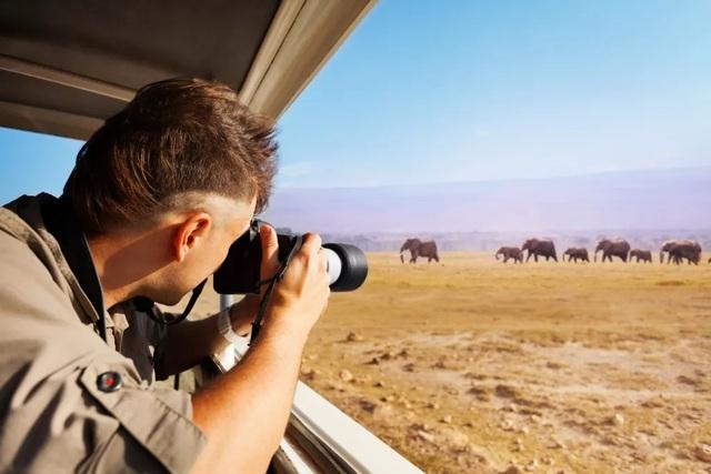 Các nhà làm phim giữ an toàn khi ghi hình động vật hoang dã như thế nào? - 2