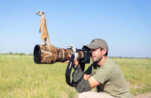 Các nhà làm phim giữ an toàn khi ghi hình động vật hoang dã như thế nào? - 1