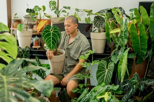 Chàng trai Sài Gòn chi 300 triệu đồng trang trí nhà bằng 50 loại cây độc lạ - 10