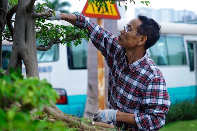 Mãn nhãn với cây sanh cổ song thân, đẹp từng centimet của đại gia Hà Nội - 7