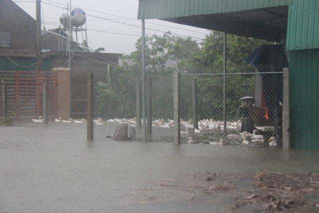 Hà Tĩnh đang gánh chịu trận lũ lụt lớn nhất trong 50 năm qua? - 6