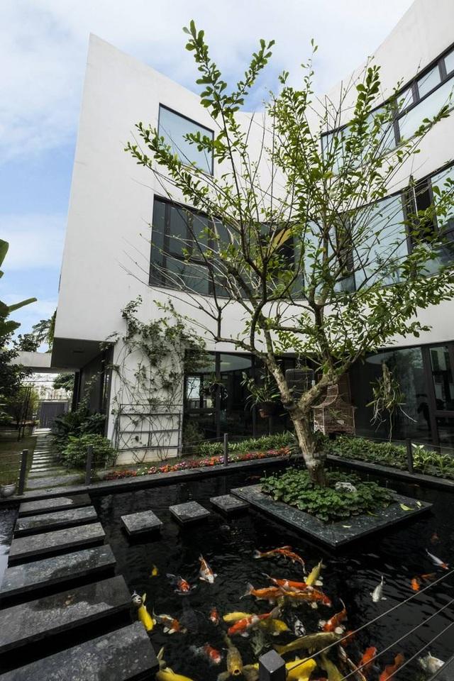Biệt thự ở Hà Nội mát rượi quanh năm nhờ vườn cây phủ kín mặt tiền - 5