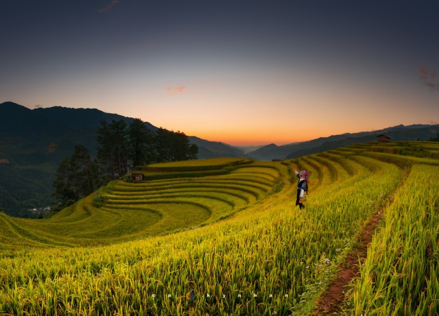 Marvel at the movie-like beautiful galaxy in Mu Cang Chai - 1