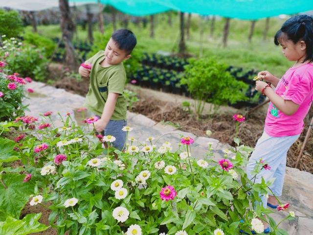 Khu vườn rộng 1.400m2 ngập tràn rau củ quả của ông bố gà trống nuôi con - 2