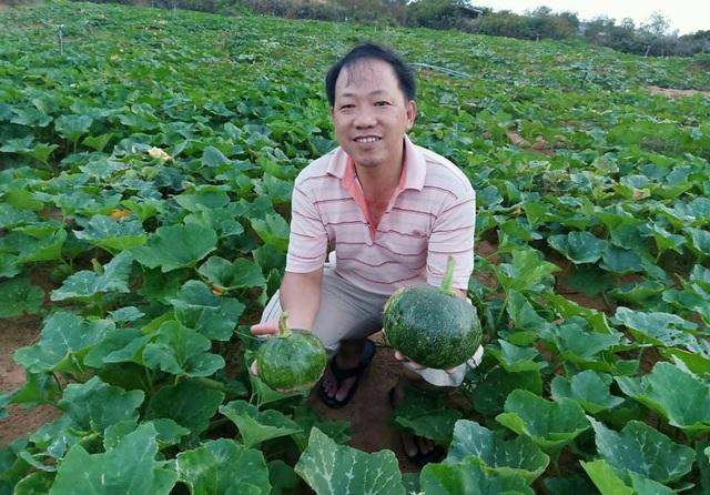 Khu vườn rộng 1.400m2 ngập tràn rau củ quả của ông bố gà trống nuôi con - 3