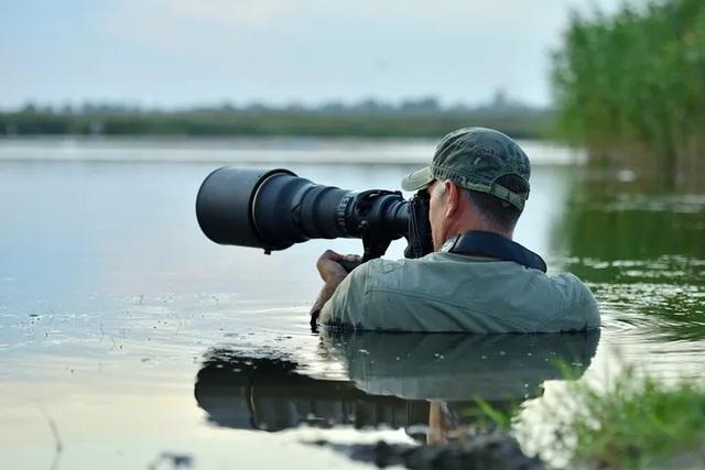 Các nhà làm phim giữ an toàn thế nào khi ghi hình động vật hoang dã? (P2) - 1