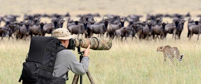 Các nhà làm phim giữ an toàn thế nào khi ghi hình động vật hoang dã? (P2) - 2
