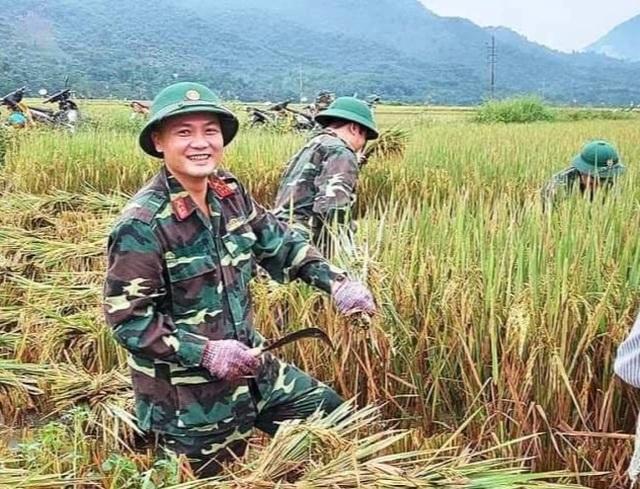 Sức trẻ giúp dân gặt lúa để chạy lũ - 3