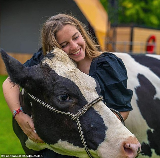 """Đổ xô đi... """"ôm bò"""" để học cách vui sống - 1"""