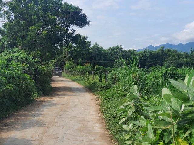Ninh Thuận khánh thành nhà máy điện mặt trời ngàn tỷ - 2