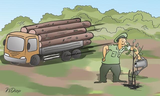 Ai đang trả giá cho tội ác phá rừng? - 1