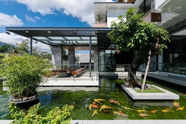 Choáng ngợp với những biệt thự Việt sở hữu bể cá Koi tiền tỷ - 7