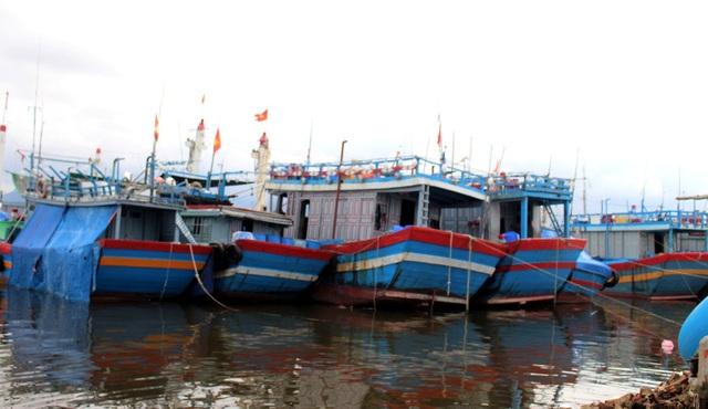 """Người dân Quảng Nam hối hả chằng chống nhà """"đón"""" bão - 13"""