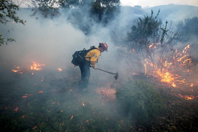 Cháy rừng dữ dội tại California, hàng trăm nghìn người di tản - 8
