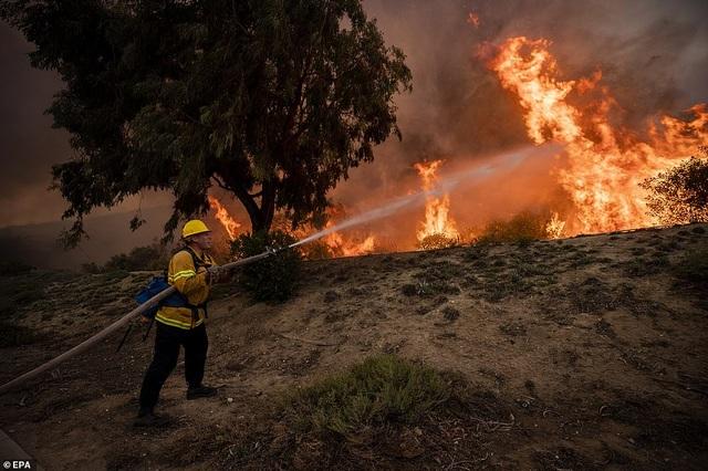 Cháy rừng dữ dội tại California, hàng trăm nghìn người di tản - 4