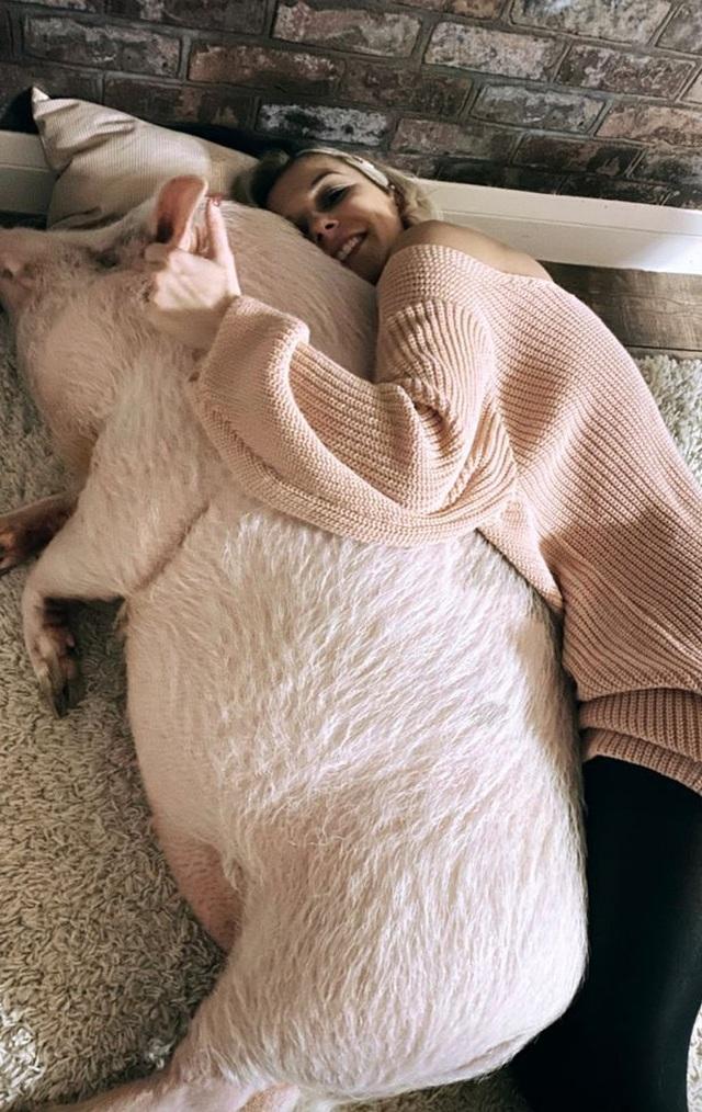 Chung sống cùng lợn 80 kg, yêu thương như con người - 3